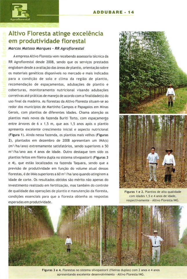 Reportagem Altivo Floresta